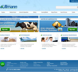 CRIAÇÃO DE SITES: WEBSITE GRUPO ULLMANN