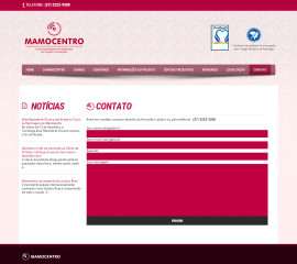 CRIAÇÃO DO SITE MAMOCENTRO: WEBSITE WORDPRESS